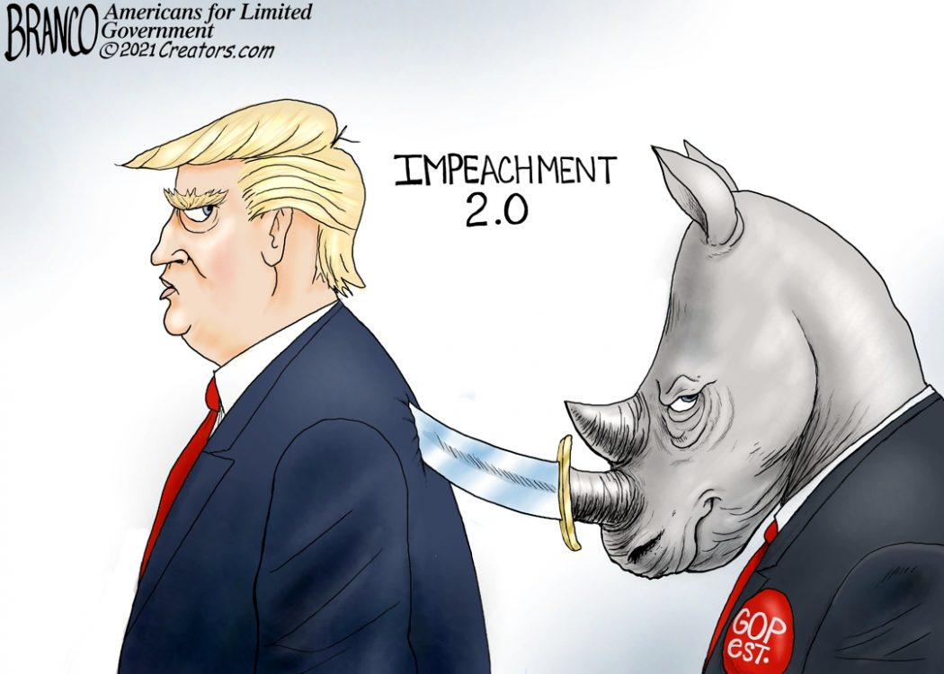 RINOs For Impeachment 2.0