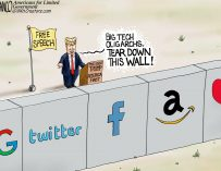 A.F. Branco Cartoon – Wall of Silencing