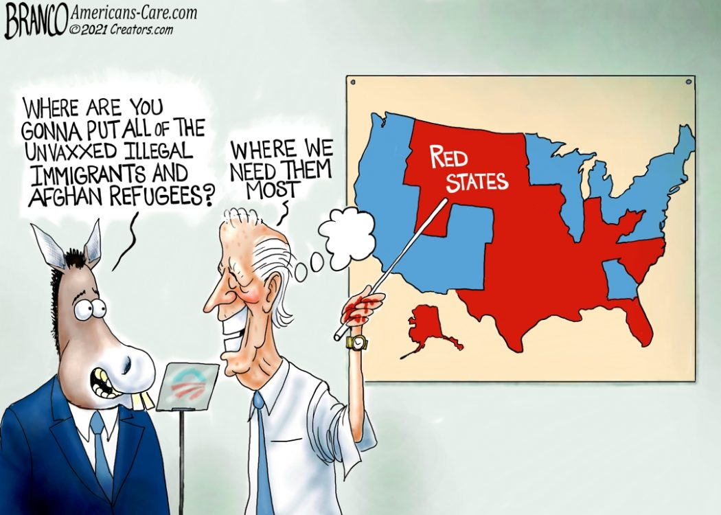 Illegals In Red States