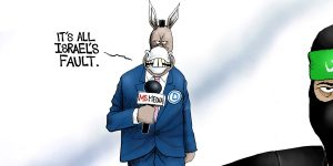 A.F. Branco Cartoon - Useful Mediots